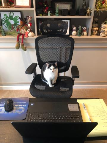 Orlando, the Pro Mark Group office manager.
